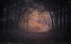 Path - Anton Atanasov